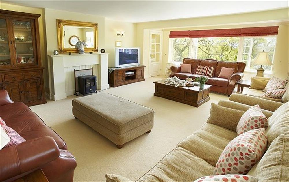 Ground floor: Large 26ft drawing room with comfy sofas for twelve guests at Underwood House, East Knoyle