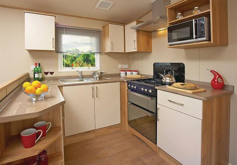 The kitchen in the Superior Caravan 2 at Viewfield Manor Holiday Park in Kilwinning, Ayrshire
