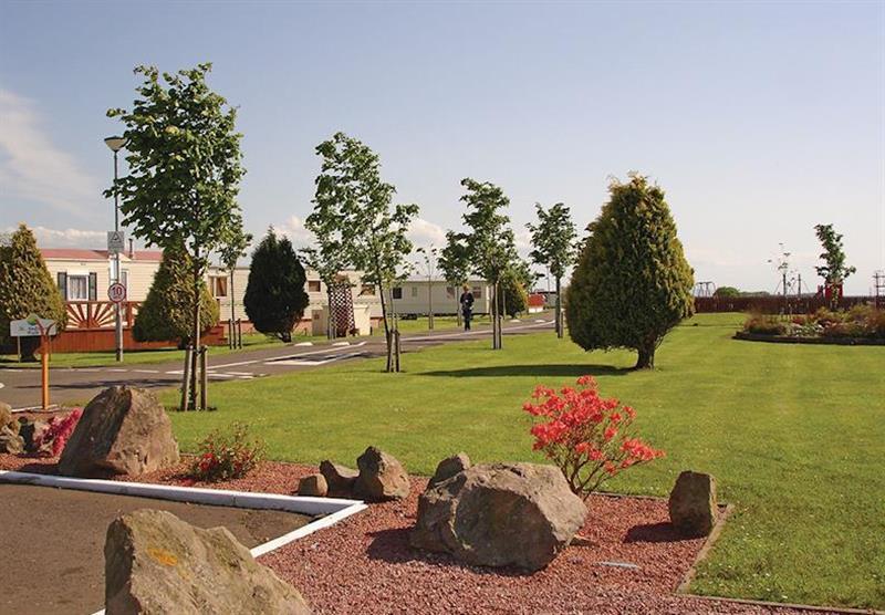The park setting at Viewfield Manor Holiday Park in Kilwinning, Ayrshire