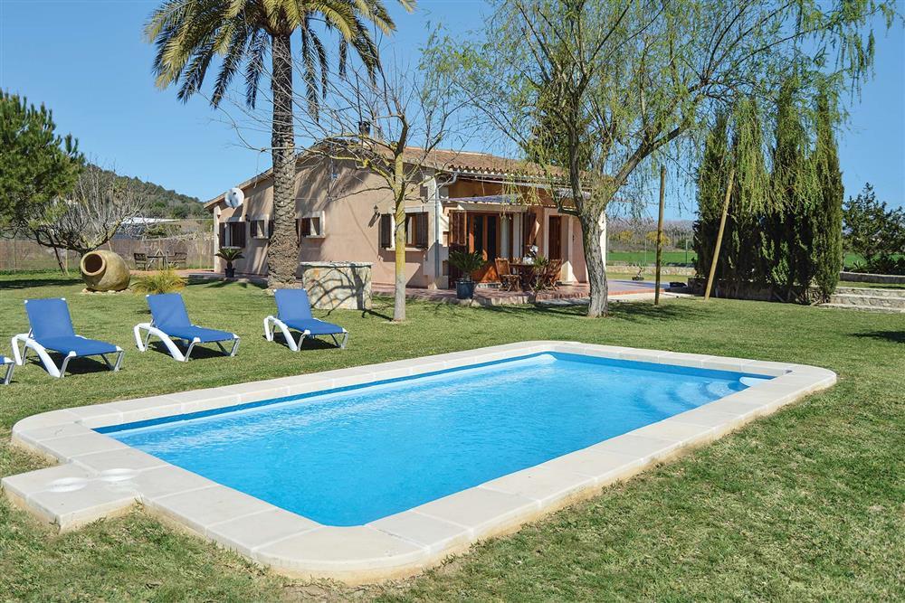 Swimming pool at Villa Can Segue, Alcudia, Mallorca