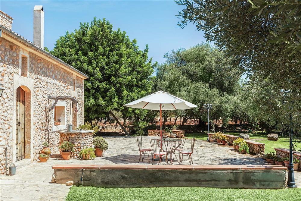 Garden at Villa Carratxet, Sa Pobla, Mallorca