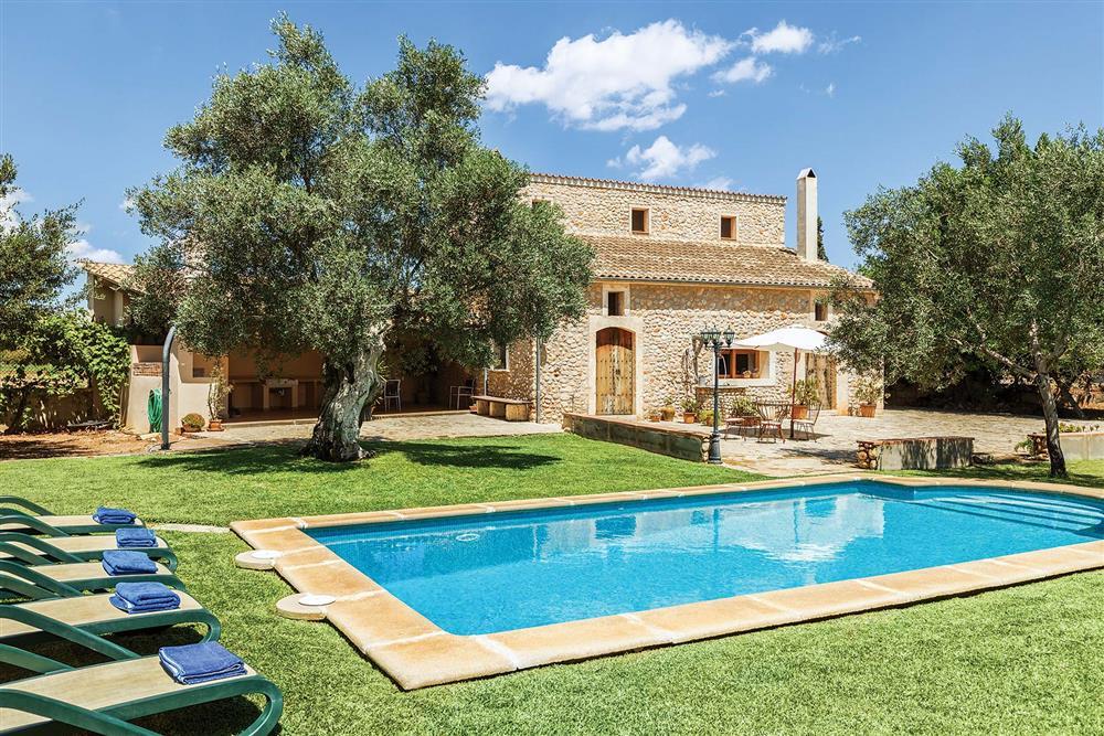 lawned garden and pool at Villa Carratxet, Sa Pobla, Mallorca