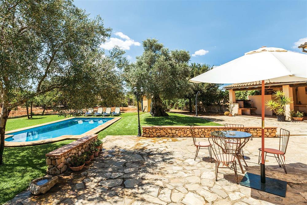Swimming pool at Villa Carratxet, Sa Pobla, Mallorca