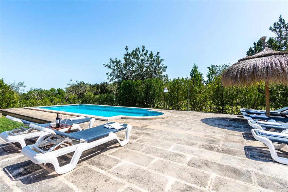 Pool, sunloungers at Villa Marina Alto, Pollensa, Mallorca