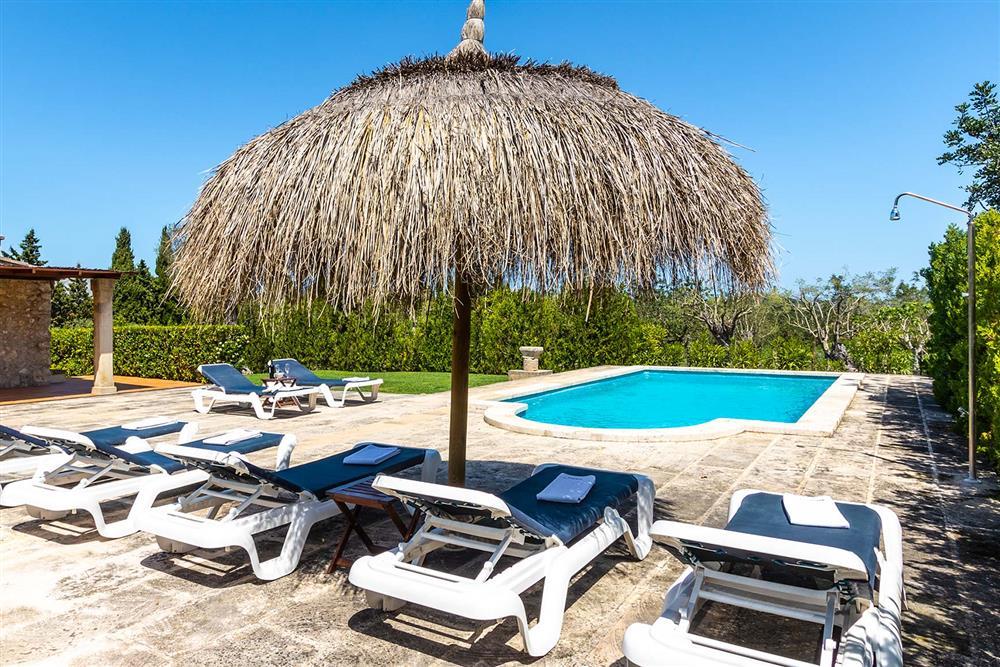 Sunloungers, villa with pool (photo 2) at Villa Marina Alto, Pollensa, Mallorca