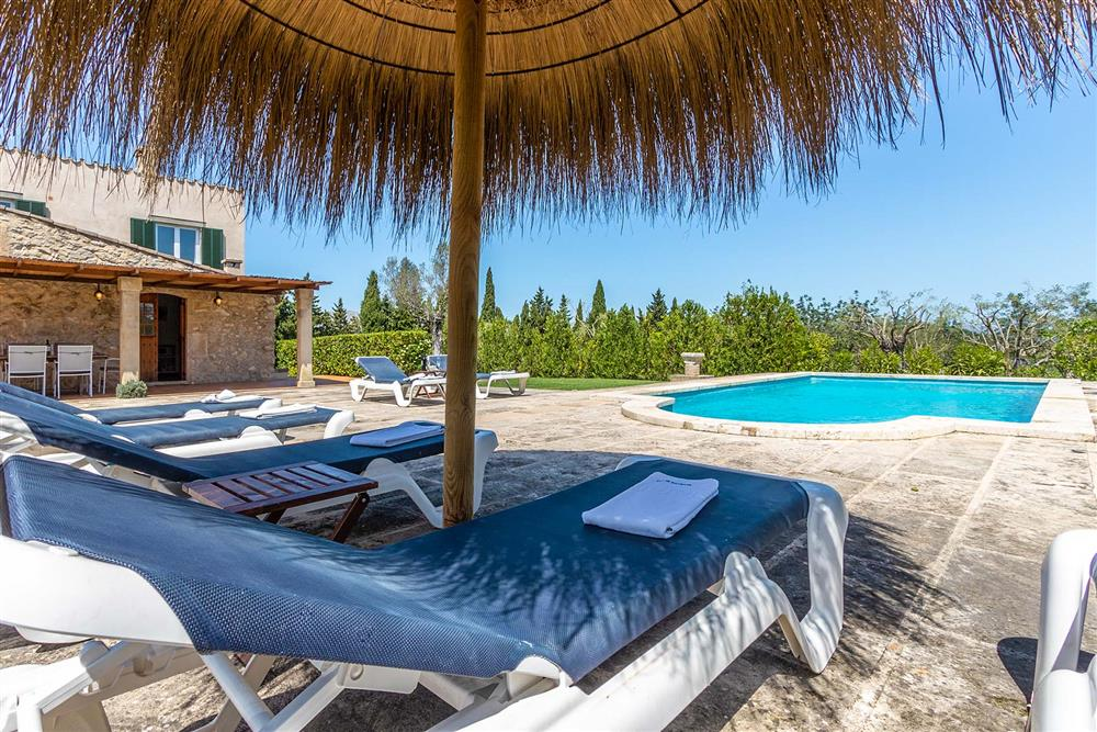 Sunloungers, villa with pool at Villa Marina Alto, Pollensa, Mallorca