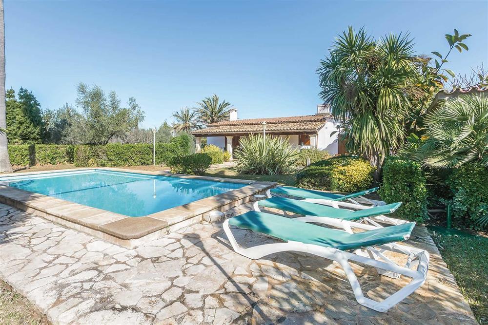 Villa with pool (photo 2) at Villa Moreno, Pollensa, Mallorca