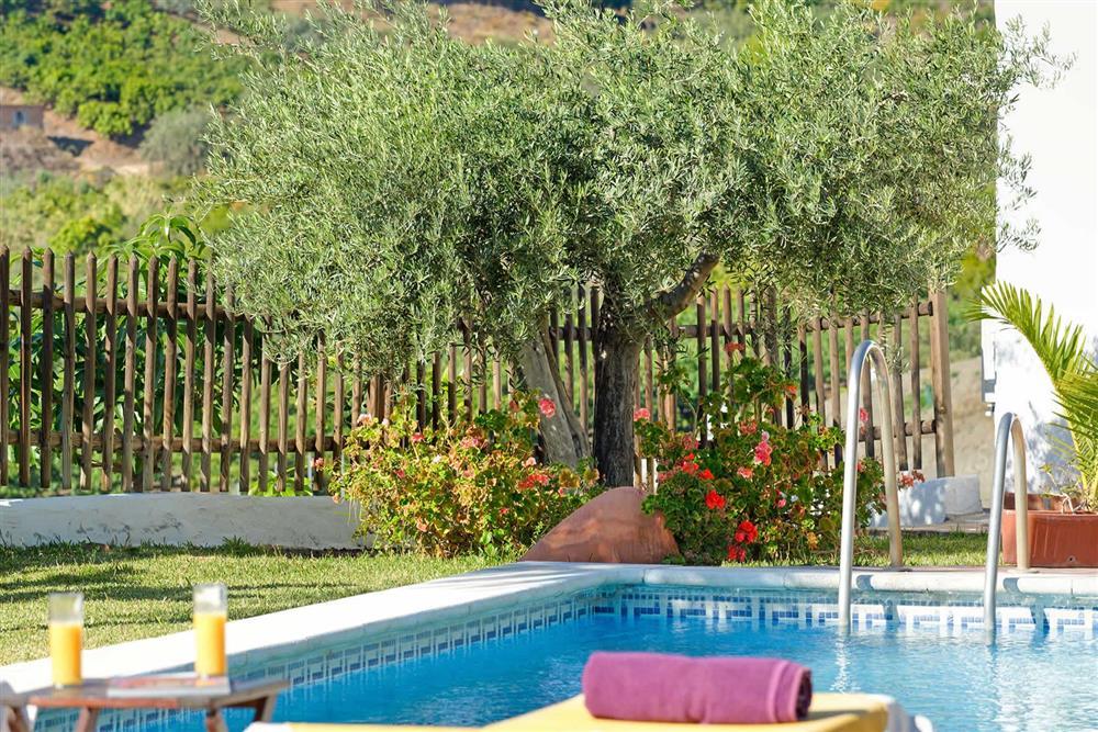 Pool (photo 2) at Villa Paraiso, Frigiliana, Andalucia