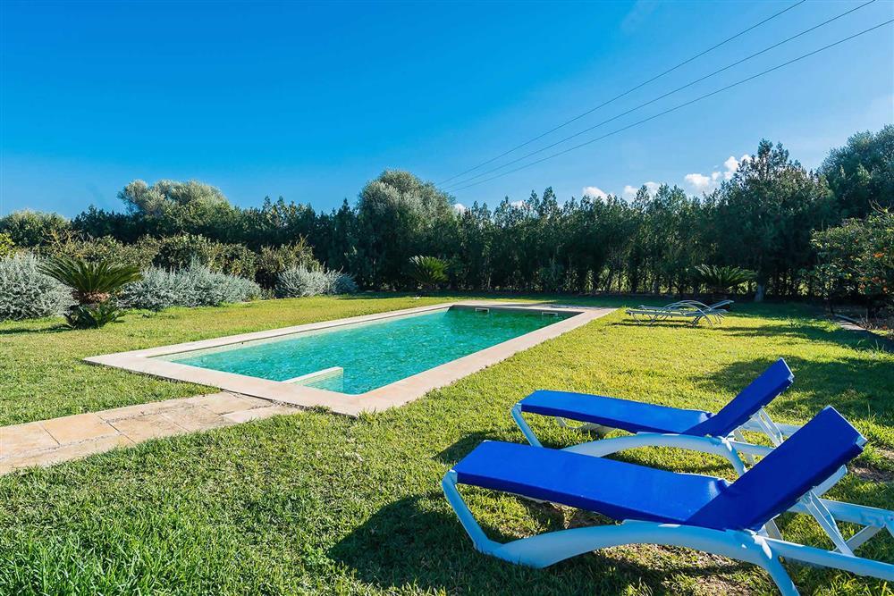 Pool at Villa Son Morey II, Can Picafort, Mallorca