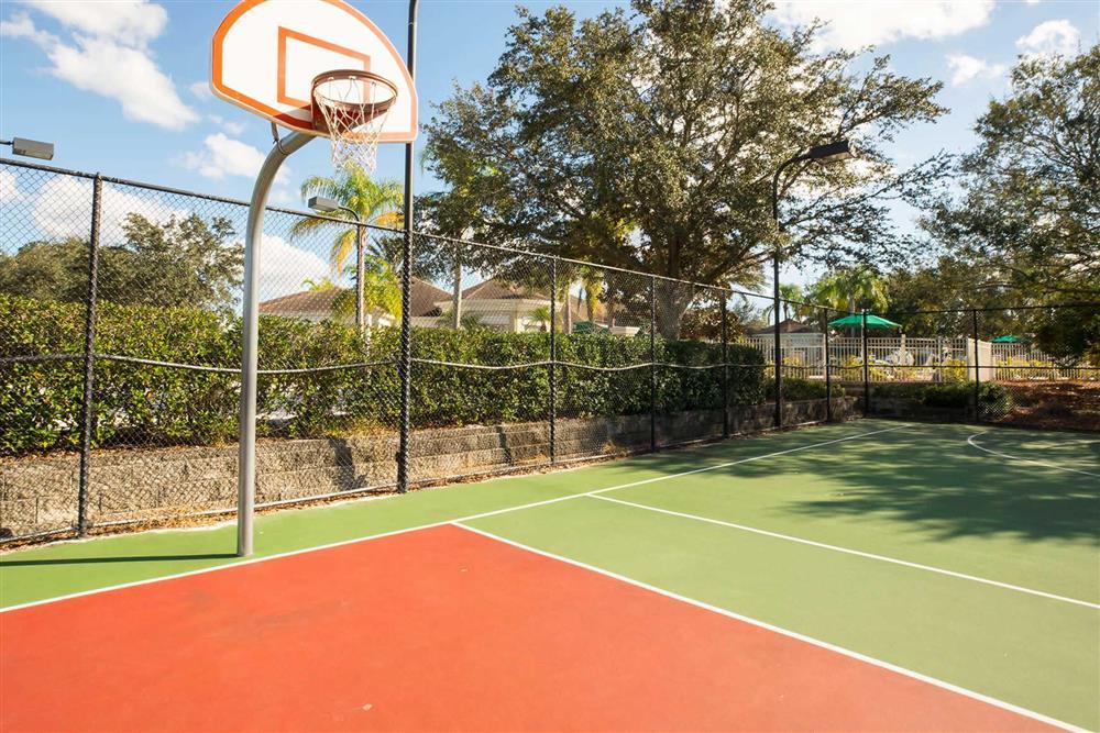 Complex basketball