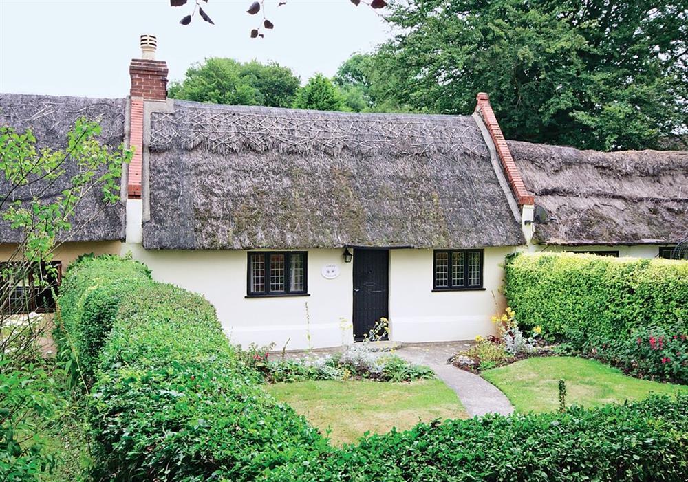 Violet Cottage at Violet Cottage in Great Yarmouth, Norfolk