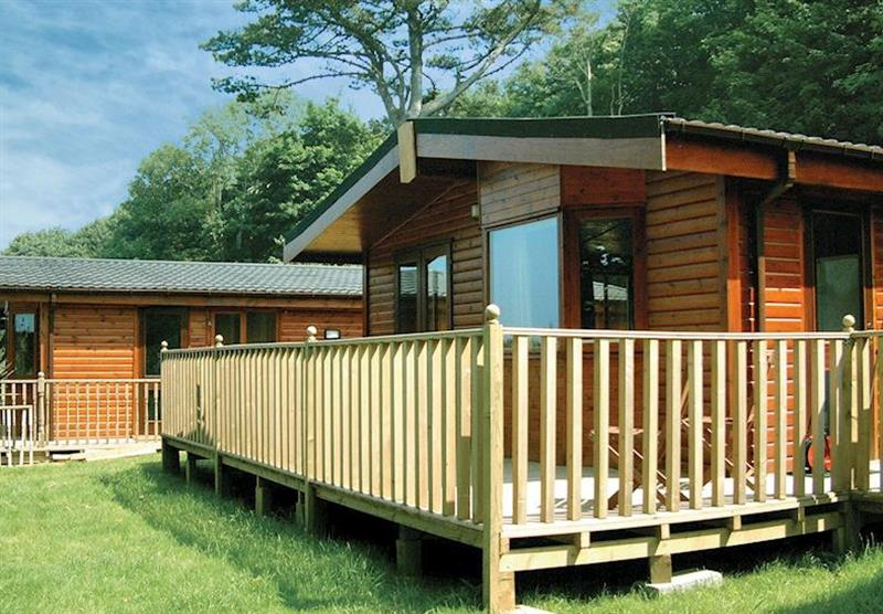 Typical Amberwood at Watermouth Lodges in North Devon, South West of England