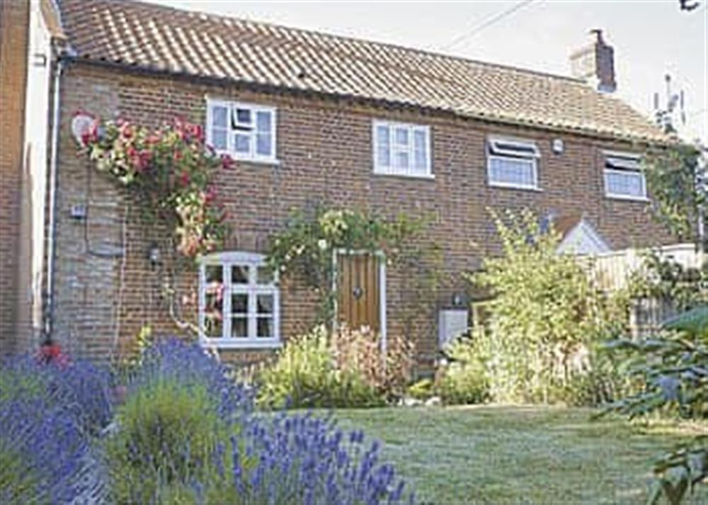 Exterior at West Cottage in Lessingham, Norwich, Norfolk., Great Britain