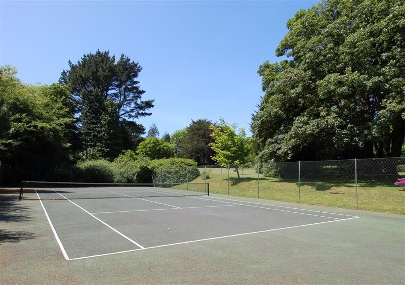 Tennis court at West Vane, Ugborough, Devon