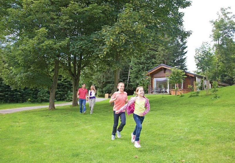 Photo 2 at Westholme Lodges in Yorkshire, North of England