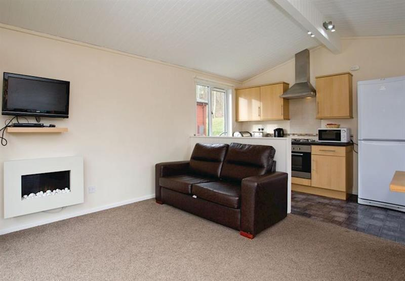 Westholme Sycamore VIP (photo number 12) at Westholme Lodges in Yorkshire, North of England