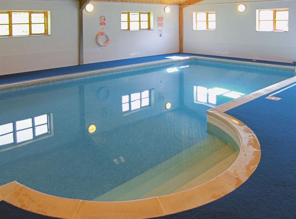 Swimming pool at Foxglove,