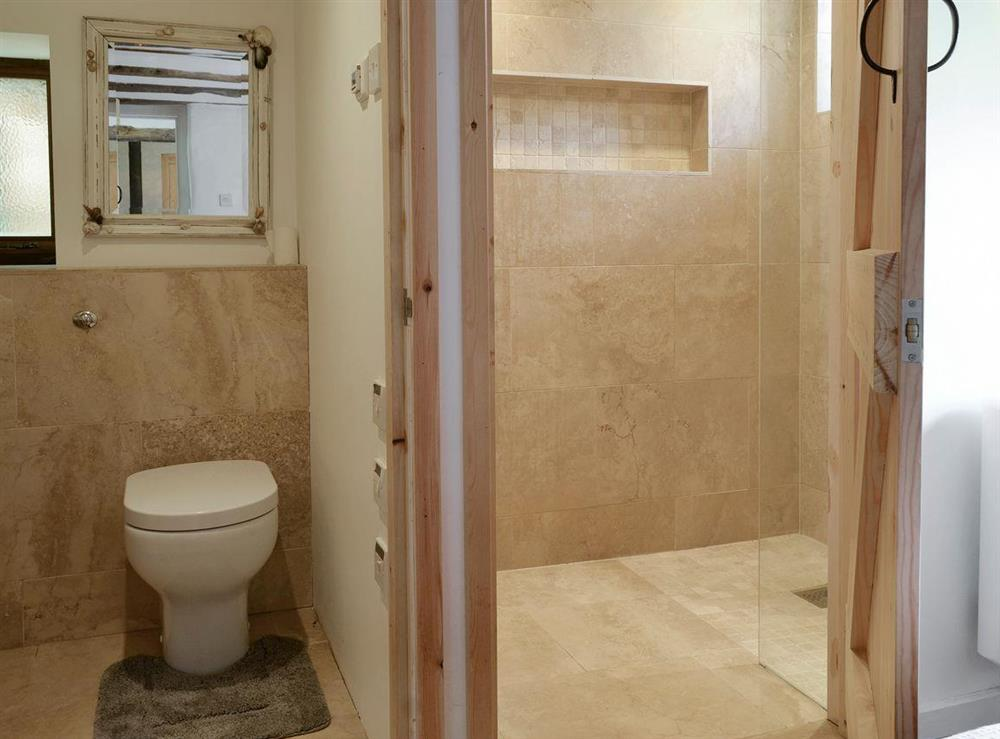 En-suite shower room and toilet at Mad Nelly Cottage,