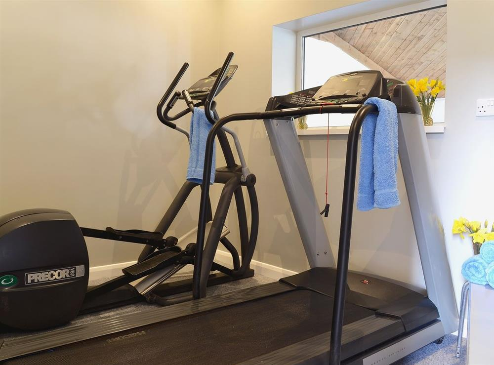 Gym at Mad Nelly Cottage,