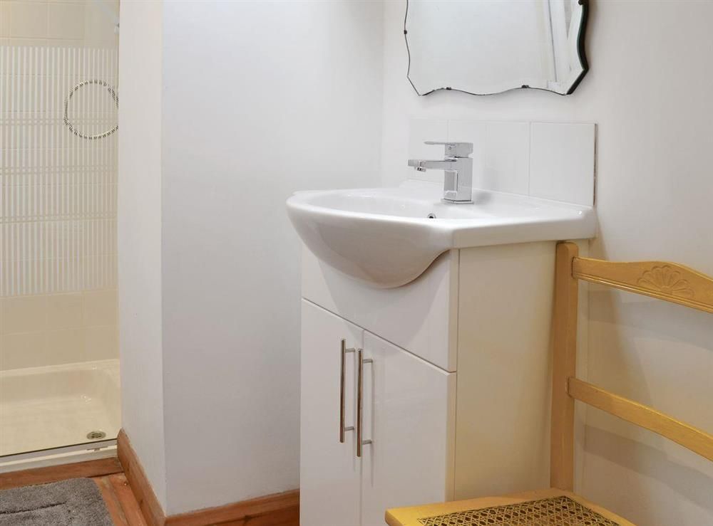 Shower room at Mad Nelly Cottage,