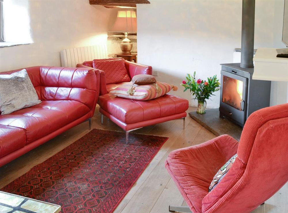 Welcoming living room with wood burner at Mad Nelly Cottage,