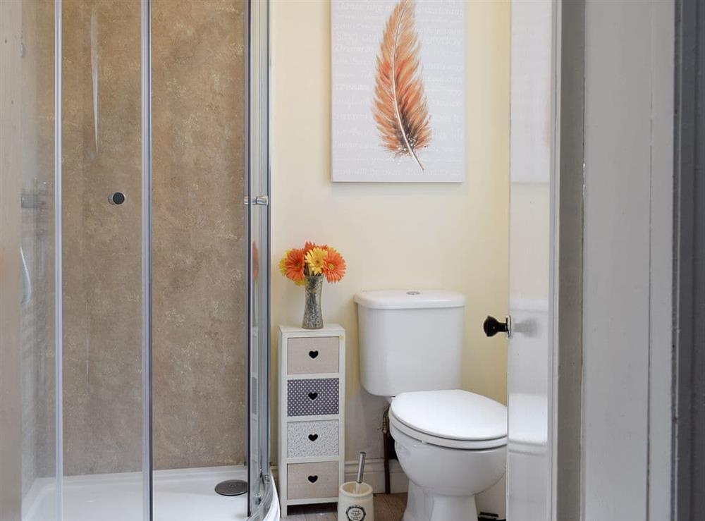 En-suite shower room at Hidden Treasure,
