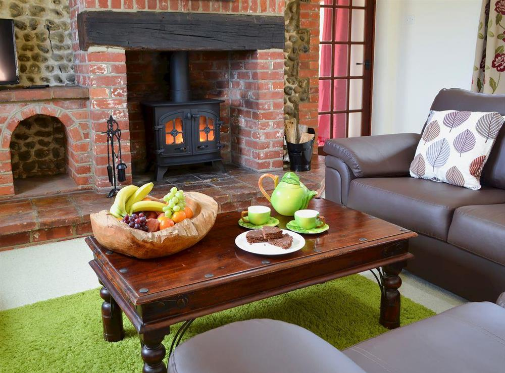 Relaxing and warm living area with wood burner at Flint Barn,