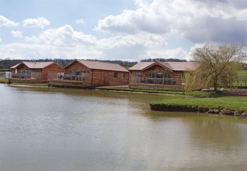 The lodge setting (photo number 3) at Willow Lakes Lodges in Lincolnshire, East of England