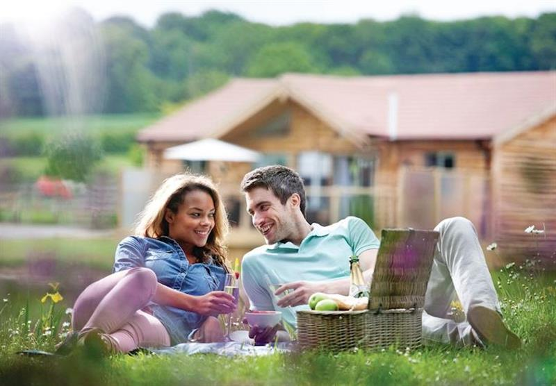 The park setting at Willow Lakes Lodges in Lincolnshire, East of England