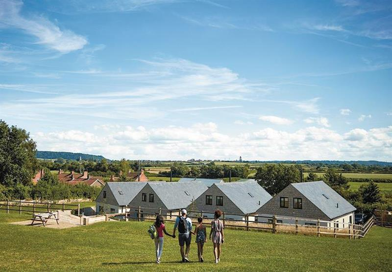 The cottages, under a blue sky at Windmill Retreat in Glastonbury, Somerset