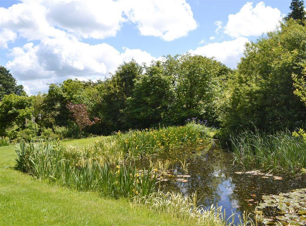 Tranquil ornamental lake within garden at The Old Barn,