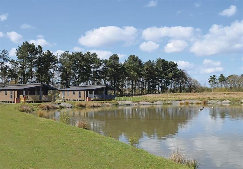 The park setting (photo number 10) at Woodhall Country Park Lodges in Woodhall Spa, Lincolnshire