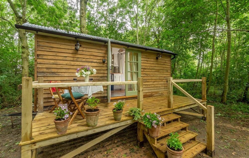 Woodland Retreat Shepherd's Hut situated in a peaceful and picturesque wood at Woodland Retreat Shepherds Hut, Brundish