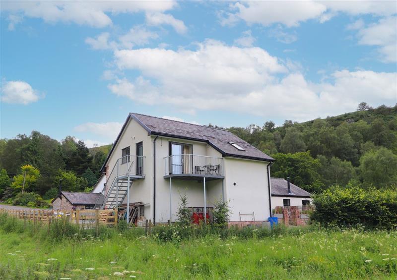 The setting at Woodland View, Eryrys near Llanarmon-Yn-Ial