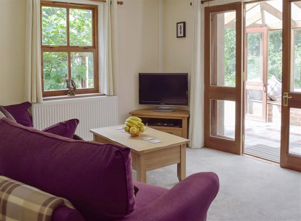 Comfortable living area at Woodpecker Rest in Llechryd, near Cardigan, Cardigan, Dyfed