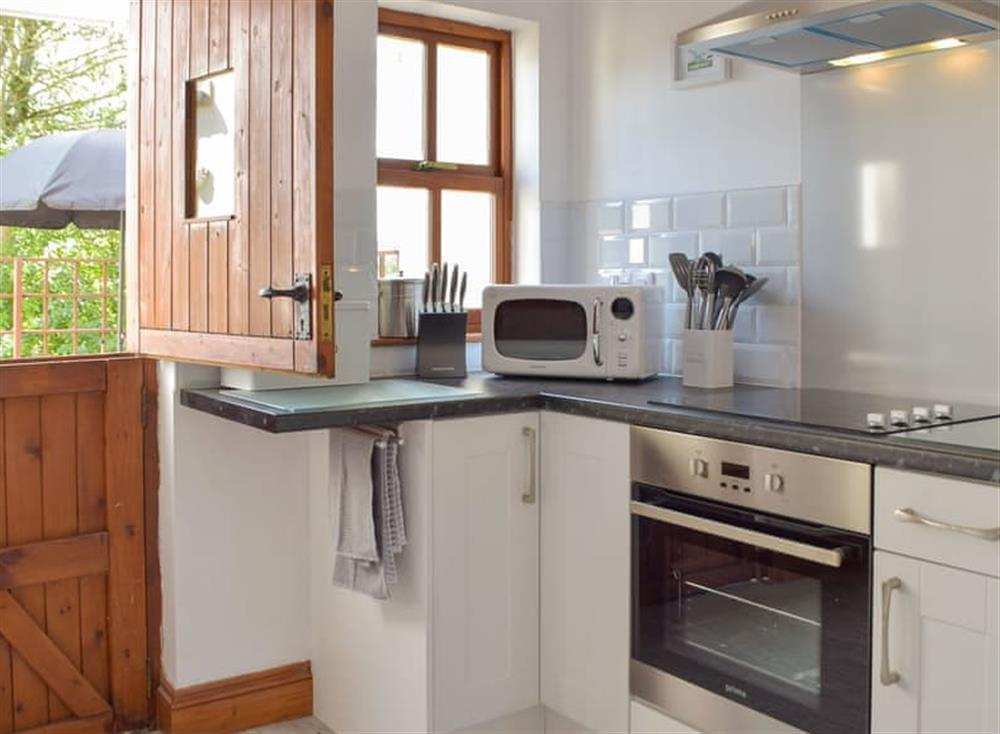 Well equipped kitchen at Woodpecker Rest in Llechryd, near Cardigan, Cardigan, Dyfed