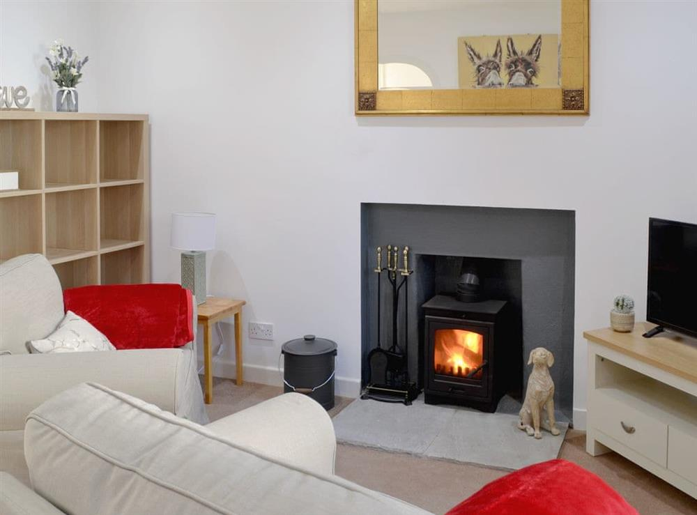 Comfy living room with cosy wood burner at Wylies Brae in New Galloway, near Castle Douglas, Kirkcudbrightshire