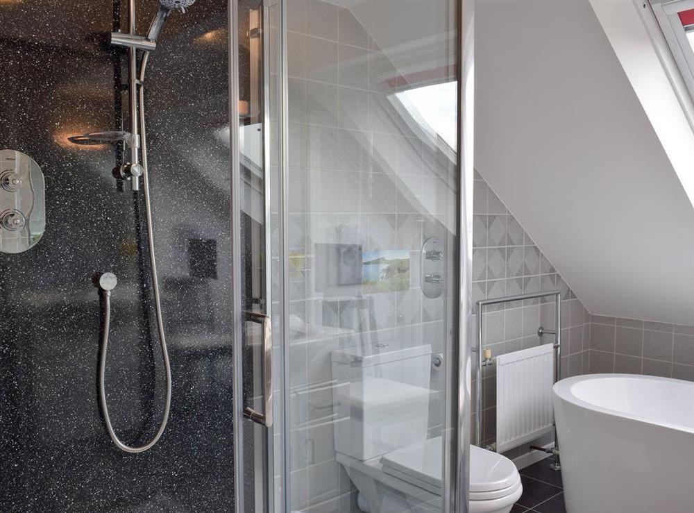 Large shower cubicle in bathroom at Y Dorlan in Cardigan, Dyfed