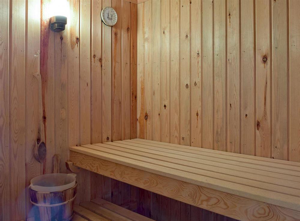 Relaxing sauna at Y Dorlan in Cardigan, Dyfed