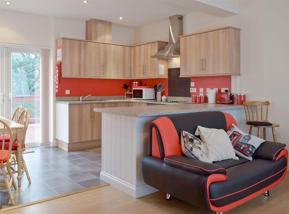 Stylish kitchen and dining area in annex at Y Dorlan in Cardigan, Dyfed